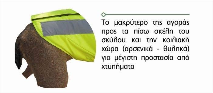 ΣΚΑΜΠΟ ΜΠΛΕ ΜΕΤΑΛΛΙΚΟ TEXT ΔΙΑΤΡΗΤΟ - Terzoudis f797e58134f